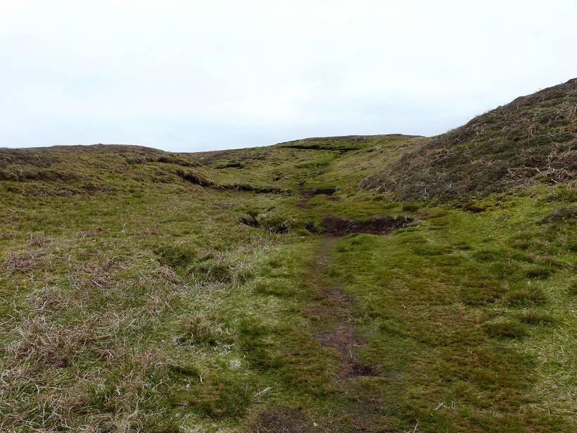 shetland 040