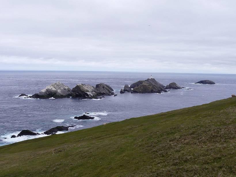 shetland 046