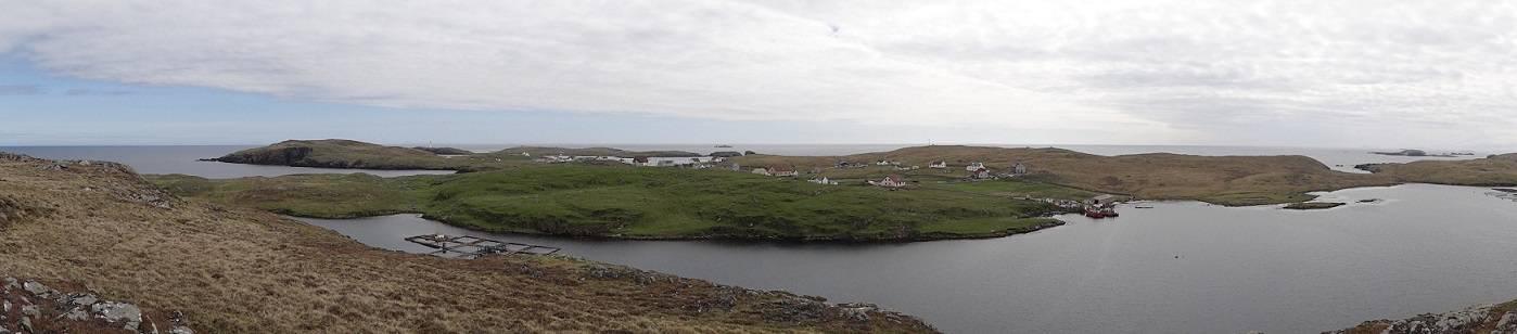 shetland 057