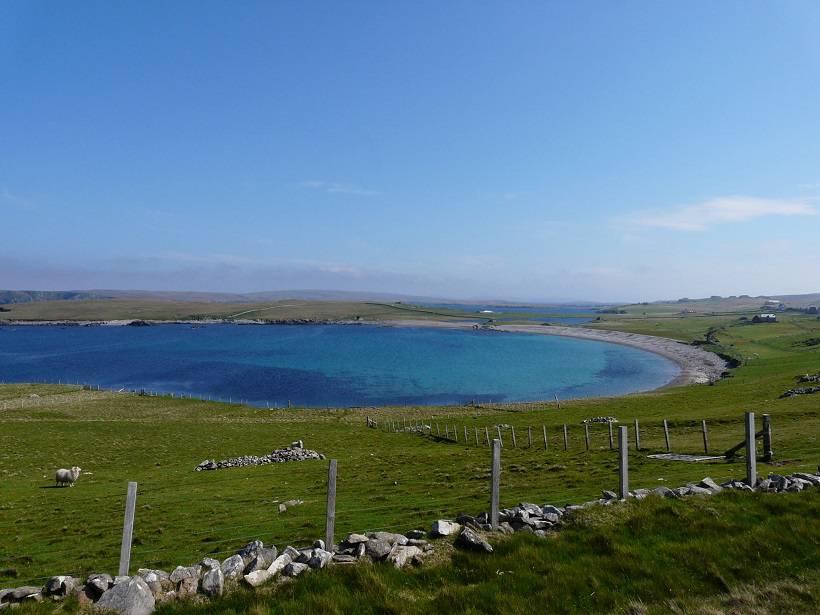 shetland 066