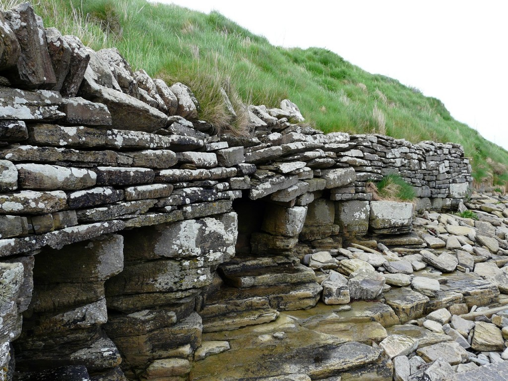 orkney 022